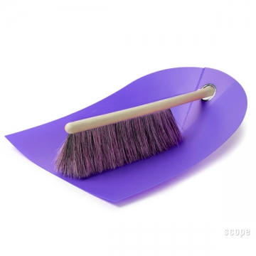 DUSTPAN AND BROOM viola
